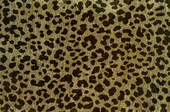 Brown leopard pattern. Royalty Free Stock Photography