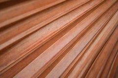 Brown liść Fotografia Stock