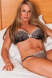Brown lingerie Stock Images