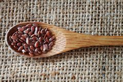 Brown linseed (flax seeds) Royalty Free Stock Images
