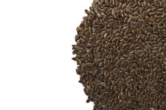 Brown linseeds close up Royalty Free Stock Photo