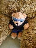 Brown little bear. Blue glasses Stock Photos
