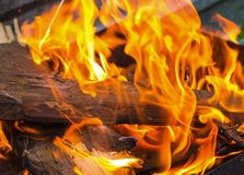 Brown log is covered with an orange bright flame of a fire. With long tongues Stock Photography
