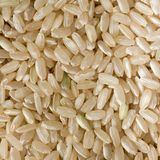 Brown long grain rice Royalty Free Stock Photography