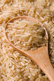 Brown long rice Royalty Free Stock Image