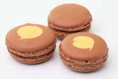 Brown macaroon on white background Royalty Free Stock Images