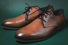 Brown male shoes. In green background Stock Photos