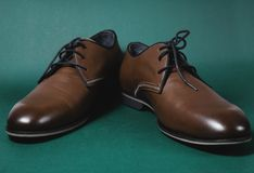 Brown male shoes. In green background Stock Photography