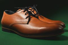 Brown male shoes. In green background Royalty Free Stock Photos