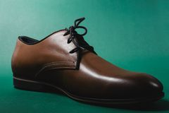 Brown male shoes. In green background Royalty Free Stock Photo
