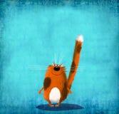 Brown manchó el gato en fondo azul Fotos de archivo