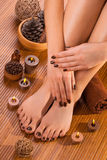 Brown manicure and pedicure on the white Stock Images