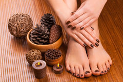 Brown manicure and pedicure on the white. Beautiful brown manicure and pedicure on the white royalty free stock photos