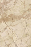 Brown marble. Texture (high resolution core tissue Stock Photos