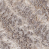 Brown marble texture. Background (High resolution Stock Photography