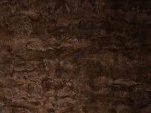 Brown maserte hölzernen Hintergrund des Korkens mit Abstufung Lizenzfreie Stockfotos
