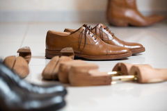 Brown men's shoes and shoe stratchers Royalty Free Stock Photography