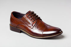 Brown men shoe Royalty Free Stock Images