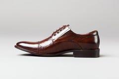 Brown men shoe Stock Photos