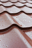Brown metal roof tiles. Rain drops on brown metal roof tiles Royalty Free Stock Image