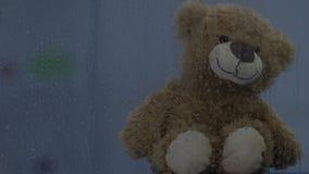 Brown miś siedzi za dżdżystym okno, oświetleniowy mruganie, dzieciństwo zbiory
