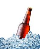 Brown misted au-dessus de la bouteille de bière sur la glace Images stock
