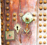 Brown  morocco in   africa the old wood  facade home and rusty saf Stock Photo