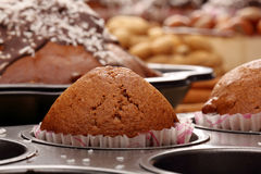 Brown muffin in the mold Royalty Free Stock Photography