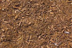 Brown mulch with a touch of red Stock Photos