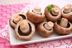 Brown mushrooms Royalty Free Stock Images