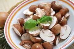 Brown mushrooms Royalty Free Stock Photo