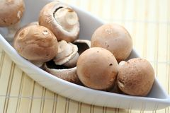 Brown mushrooms. Some brown mushrooms in a decorative bowl stock images
