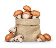 Brown mushrooms are in the bag Royalty Free Stock Images