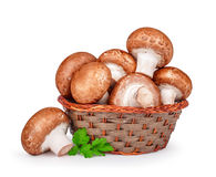 Brown mushrooms in a basket isolated white background Stock Images