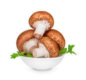 Brown mushrooms in a bowl Stock Images