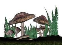 Brown mushrooms - 3D render. Brown mushrooms and vegetation in white background - 3D render stock illustration