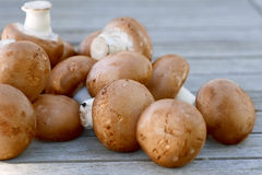 Brown mushrooms lying on a wooden table Royalty Free Stock Image