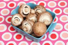 Brown Mushrooms. Some raw, brown mushrooms in a bowl royalty free stock images