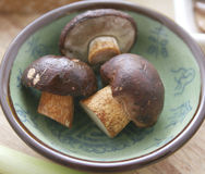 Brown mushrooms. Some raw brown mushrooms in a bowl stock photo