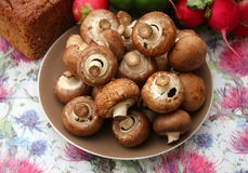 Brown Mushrooms. Some brown raw mushrooms in a bowl stock images