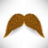 Brown Mustache Stock Photos