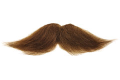 Free Brown Mustache Isolated On White Royalty Free Stock Images - 29102149