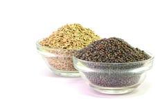 Brown Mustard Seeds and cumin seeds Stock Photography