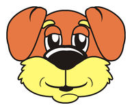 brown muzzle dog. On a white background Royalty Free Stock Image