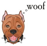 Snout of staff with say woof Royalty Free Stock Photos