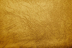 Brown natural leather skin Stock Photography