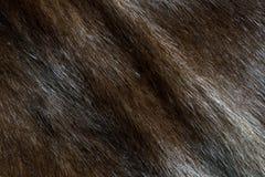 Brown-Nerzpelzhintergrund (diagonale Beschaffenheit) stockfotos
