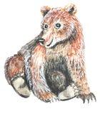 Brown niedźwiedź siedzi rozszerzanie się nogi royalty ilustracja