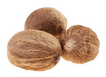 Brown nutmeg Royalty Free Stock Images