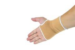 Brown obsada na ręce i ręce Zdjęcie Stock